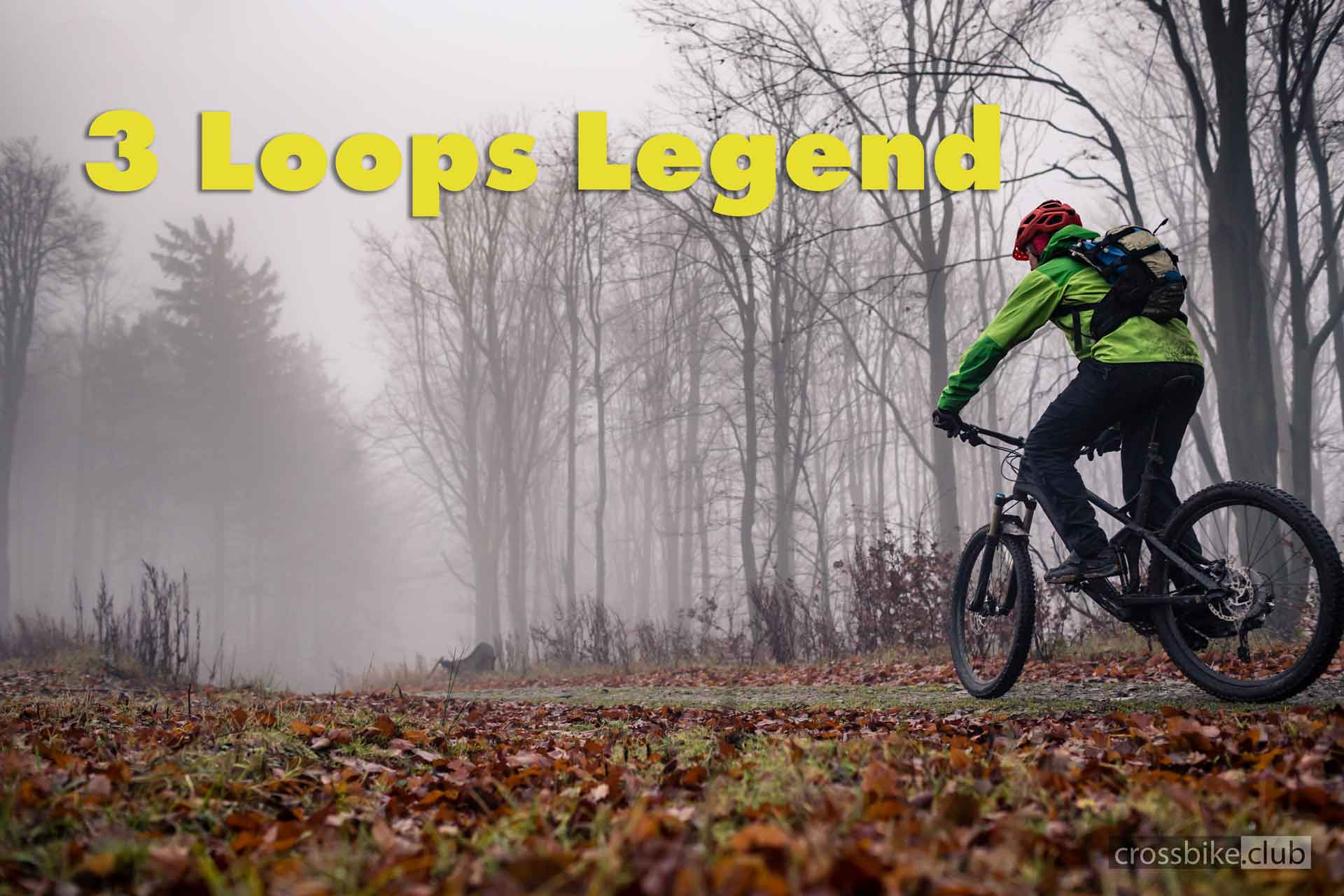 3 Loops Legend